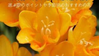 米寿祝いと黄色い花
