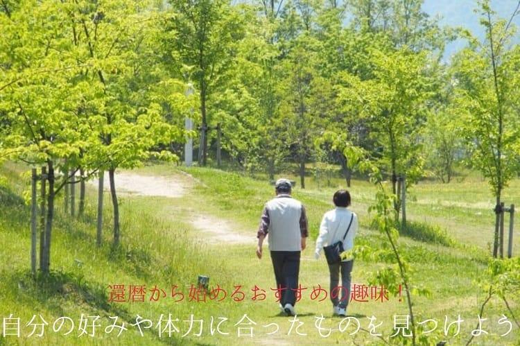 緑がたくさんある場所をシニア夫婦が散歩している様子