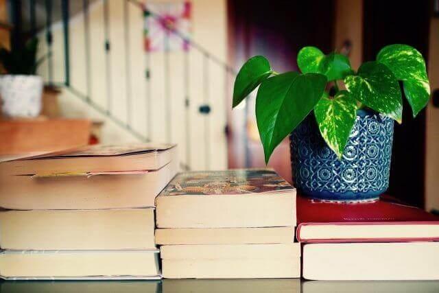 本9冊と植木