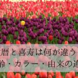 畑いっぱいの赤と紫のチューリップ