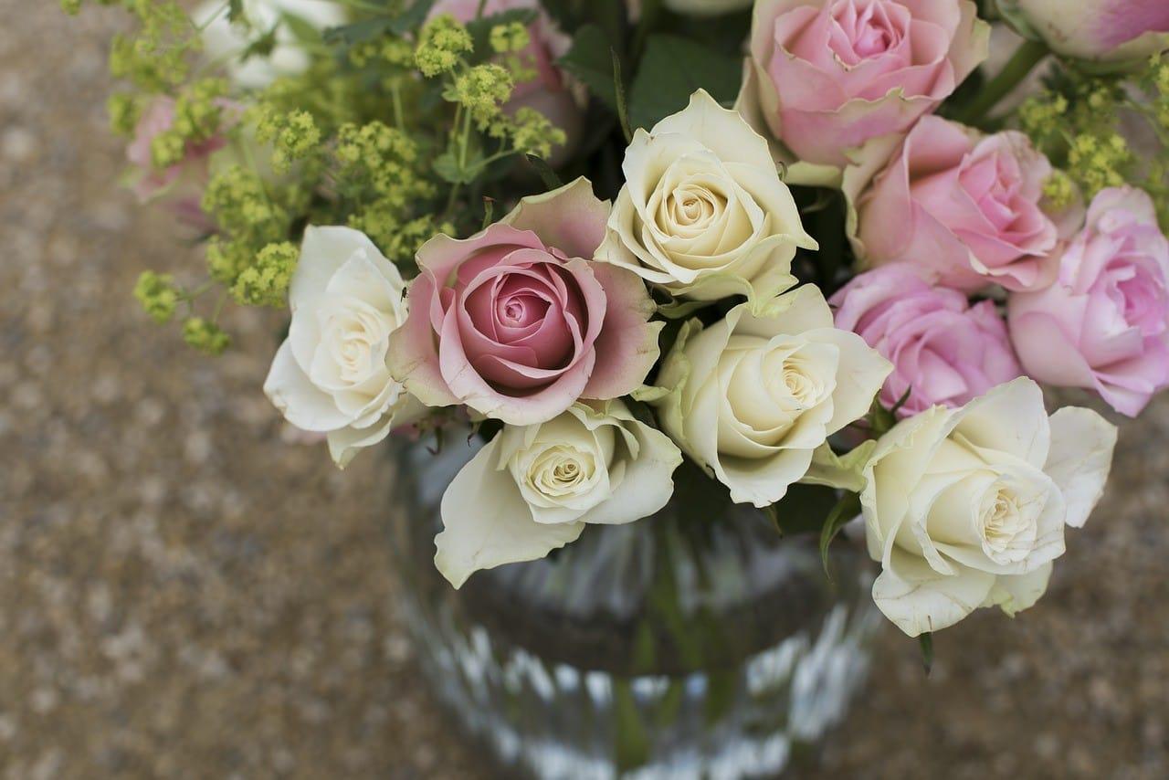 白と紫のバラの花