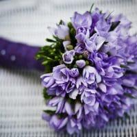 古希の紫色の花