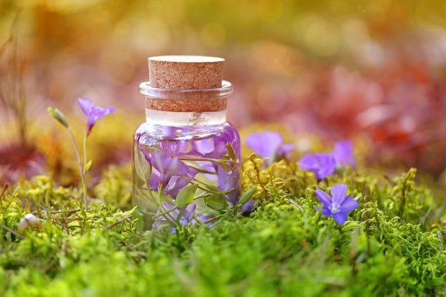 小瓶に紫色の花びら