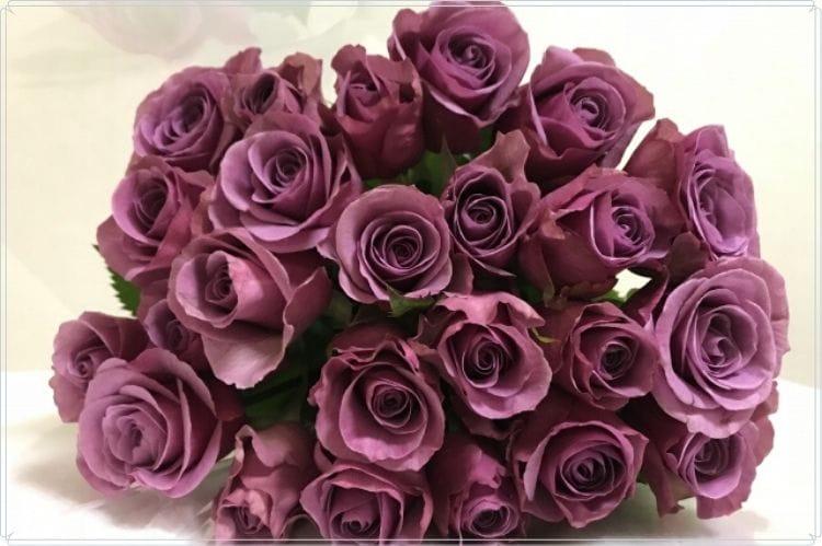 紫色の薔薇の花束