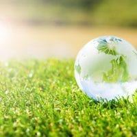 自然の緑と緑寿祝いの関係