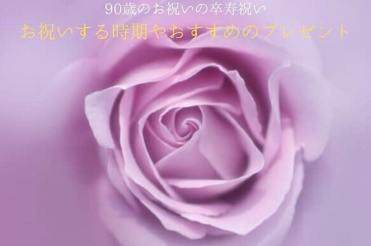 紫のバラのイメージ