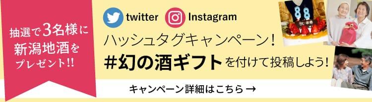 Призрачный подарок в подарок Twitter, баннер кампании Instagram