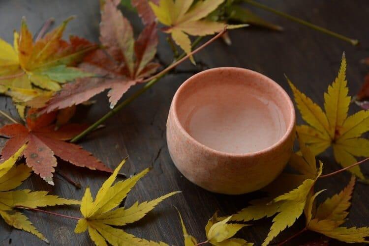 Φύλλα σφενδάμου και σοκολάτα (σακέ)