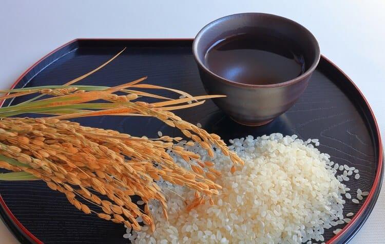 Ρύζι, αυτιά ρυζιού και σέικ