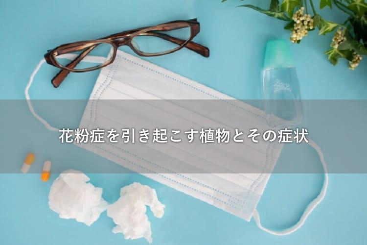 マスクや眼鏡、鼻をかんだ後のティッシュ、薬、目薬など花粉症に関するアイテム