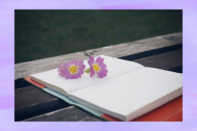 ノートの上に紫の花の花びらが二つ乗っている