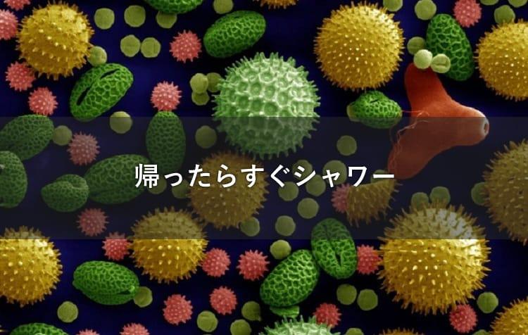 ウイルスのイメージ画像